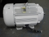 Remanufactured electric motor