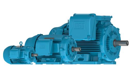 Industrial pump and electric motor repair in boise for Industrial electric motor repair